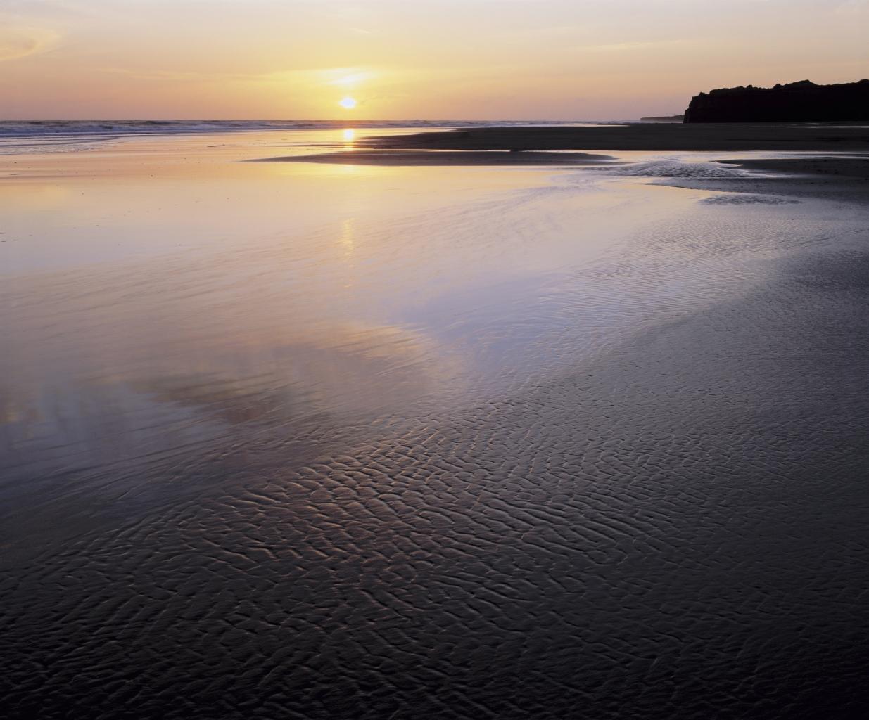 Das Wattenmeer ist ein tolles Ferienprogramm zum abkühlen und Neues entdecken.
