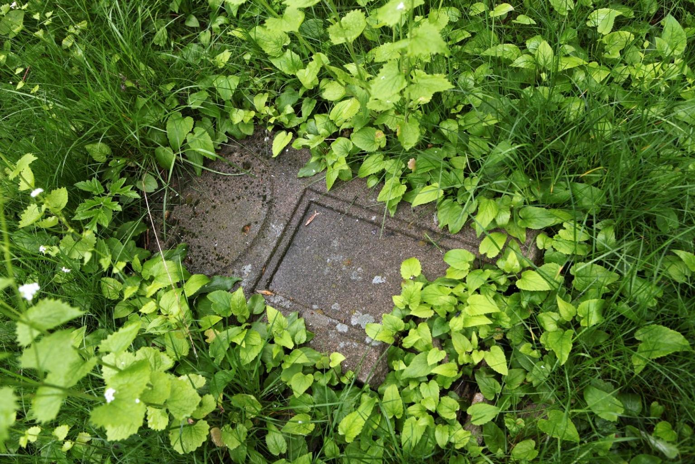 Kaum mehr lesbar und eingewachsen, dennoch unwiederbringlich hier: die Grabsteine des alten Nordfriedhofs, der heute ein verlassener Ort ist.