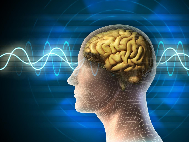 Gehirntraining durch Rätsel lösen, verbessert alle geistigen Fähigkeiten.