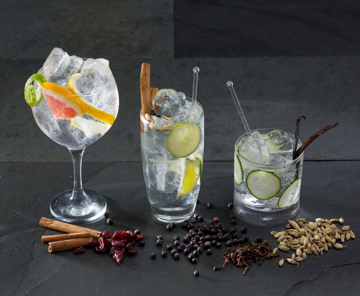 Bei der Gin-Expedition lernt ihr unter anderem, wie man gute Gin Tonics zubereitet – und werdet sie natürlich probieren!